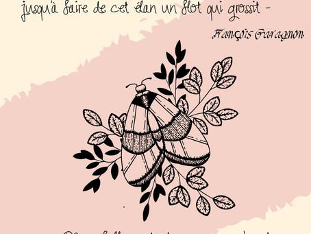 François Garagnon et le rêve ✨📖💗