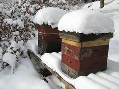 Honig, Bienen, Imker, Bad Schwalbach, Wiesbaden
