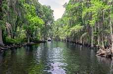 Kissimmee.River.png
