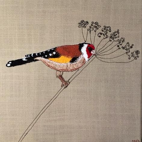 Goldfinch / Puttertje