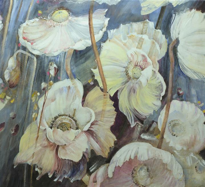 Witte anemonen