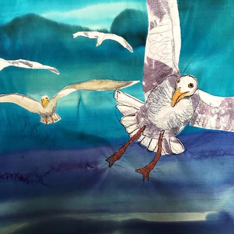 Seagulls / Zeemeeuwen