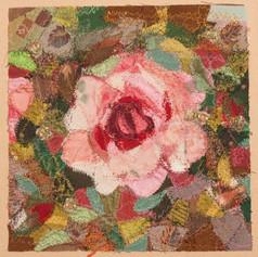 Rose / Roos