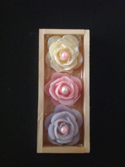 Conjunto de 3 Rosas Delicadeza