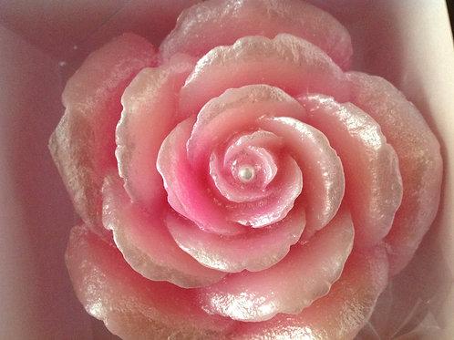 Rosa Delicadeza para Lavabo