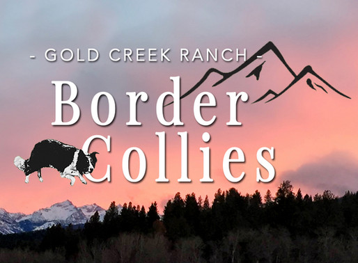 Posting to the Gold Creek Ranch BC Owners Facebook Page made easy