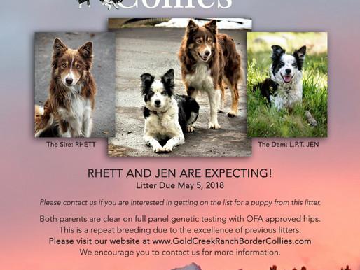 Rhett and Jen are Expecting!