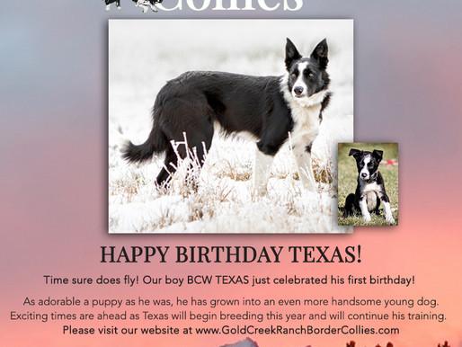 Happy Birthday Texas!