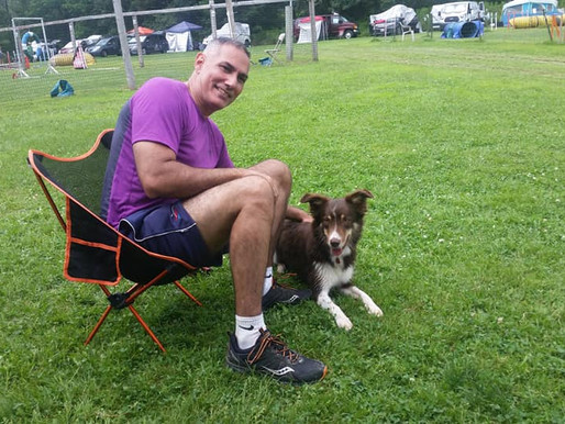 Pupdate: GCR Electra - Agility Champion