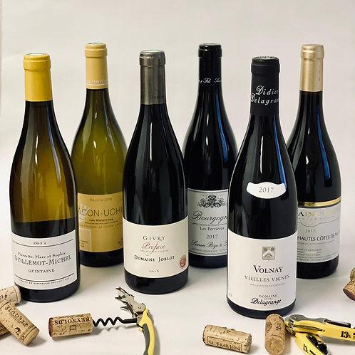 Father's Day Burgundy Lineup II