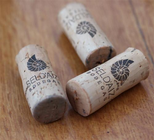 Sel_d_Aiz-Bodegas-Cantbrie-Spain-Espagne-wine-vin-Blogtrip-vignes-bouchons