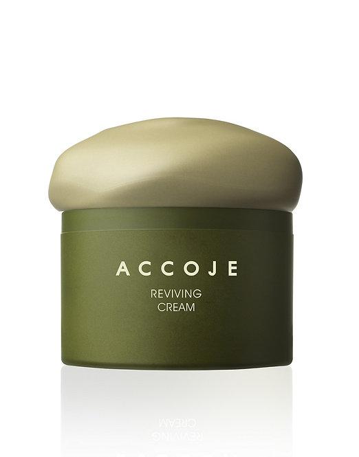 ACCOJE Reviving Cream