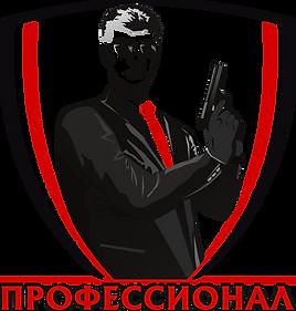 Профессионал Вектор Яркий.png