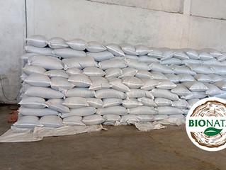 Fresh seed loaded in Ethiopia