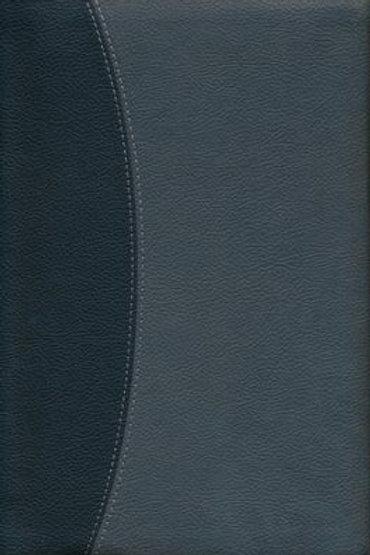 RVR 1960 Biblia Letra Gigante