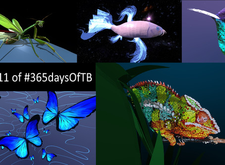 Week 11 of #365DaysOfTB – Wildlife