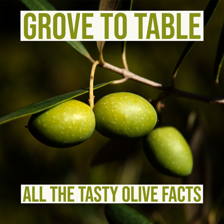 GROVE TO TABLE: All the tasty olive facts