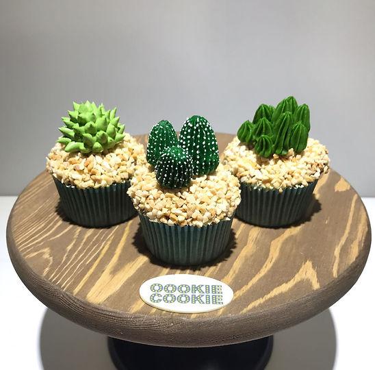 Catcus Cupcake