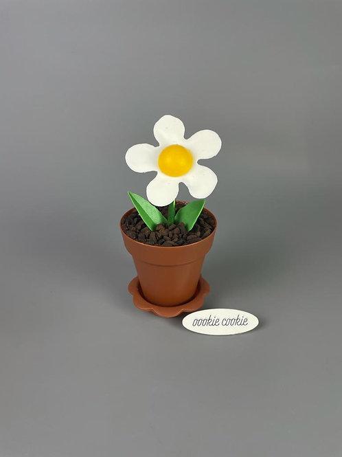 Flower Pot Cupcake - MF02
