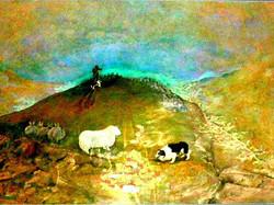 Shepherds Delight