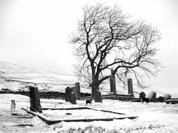 St Maree's Kirkyard