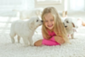 Little girl lying on the mat with labrad