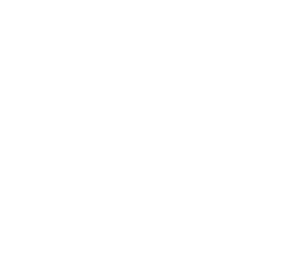 Traceopics Stamp.png