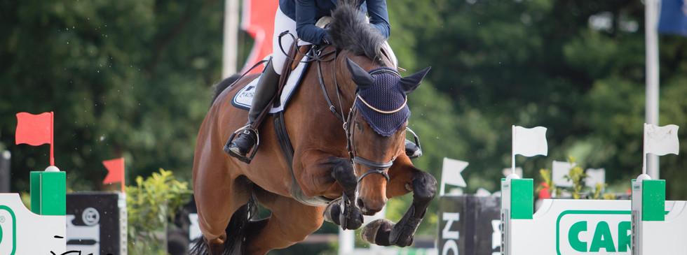 Lützower Pferdesporttage 2018
