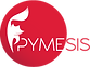 Pymesis sistemas para empresas a