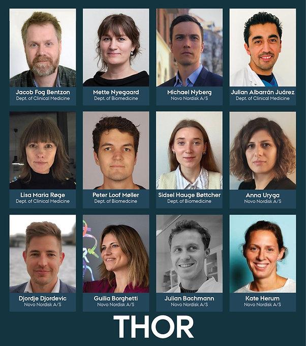 Thor team.jpeg