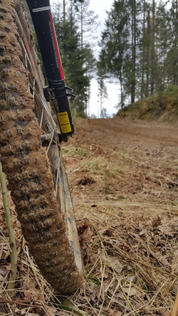 Mud and sung bike rout at forest