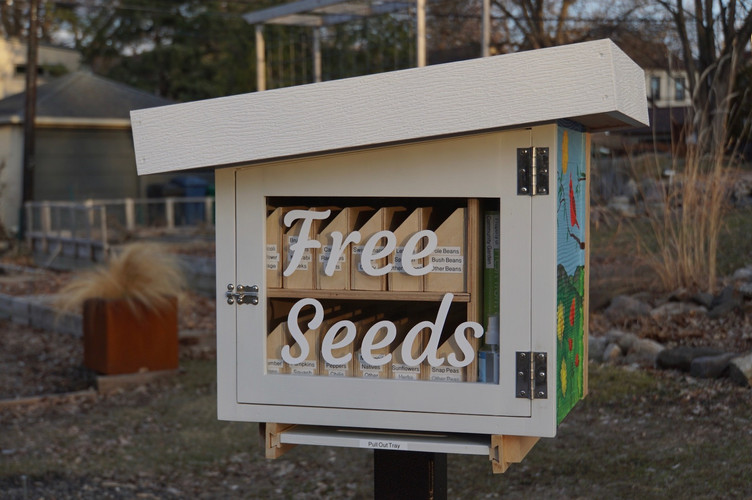 Seed library photo.jpg
