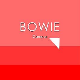 Bowie Web ID Square.jpg