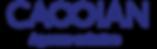 Logo cassian-03.png