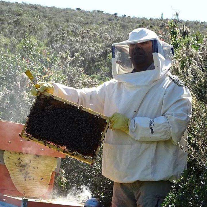 Giancarlo e le sua api