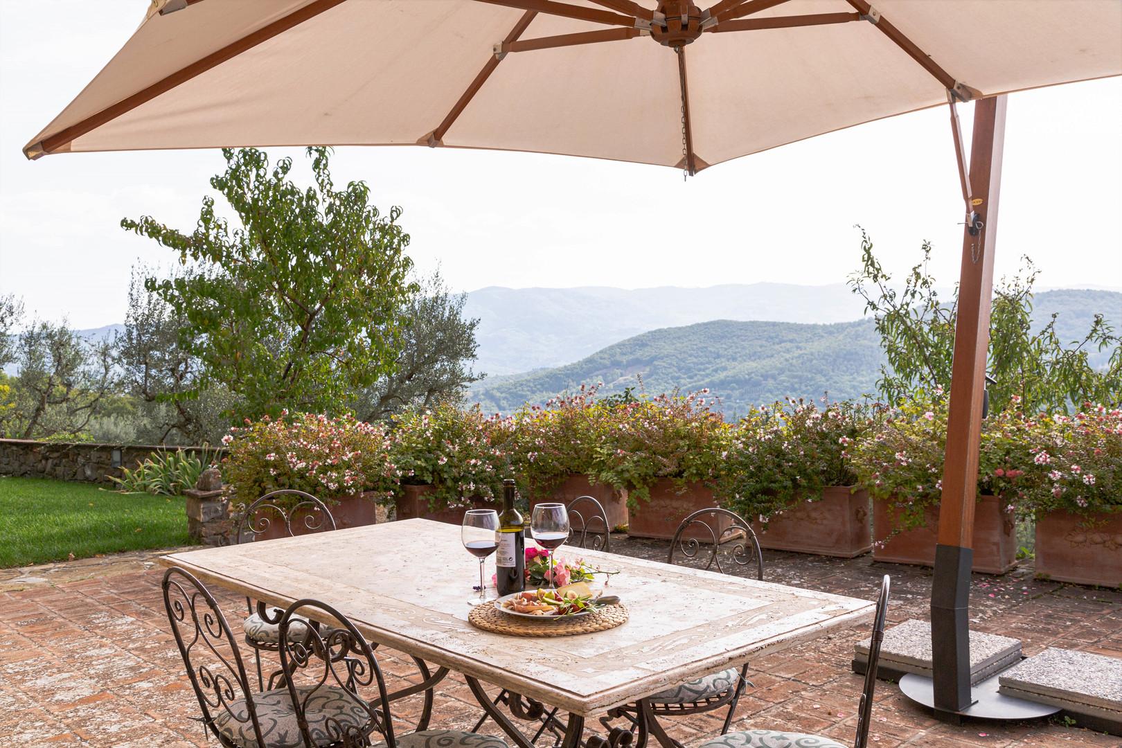 Terrace facing south