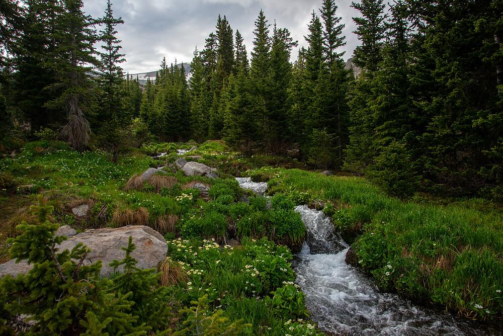 Cascades Indian Peaks Colorado