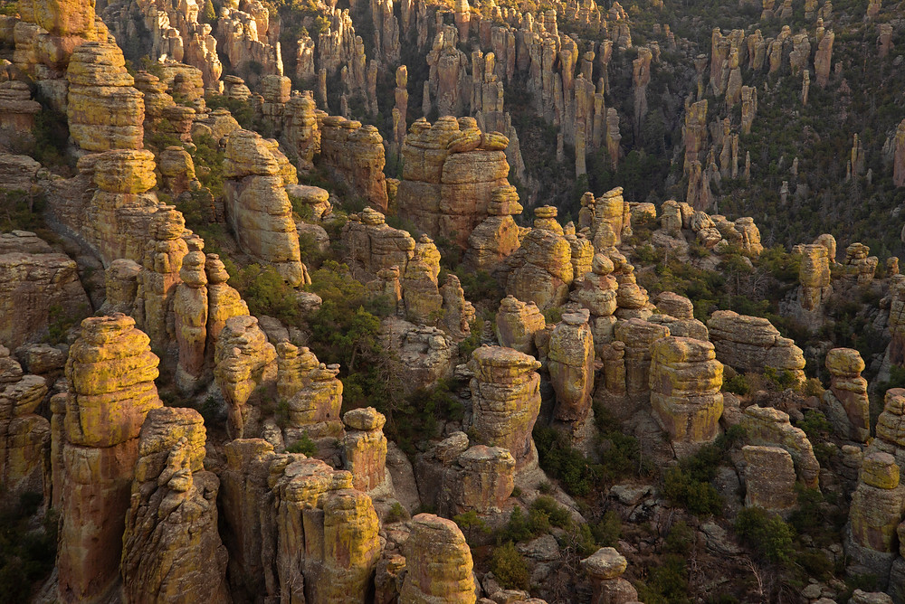 The rhyolite hoodoos of the Chiricahua Mountains in Arizona.
