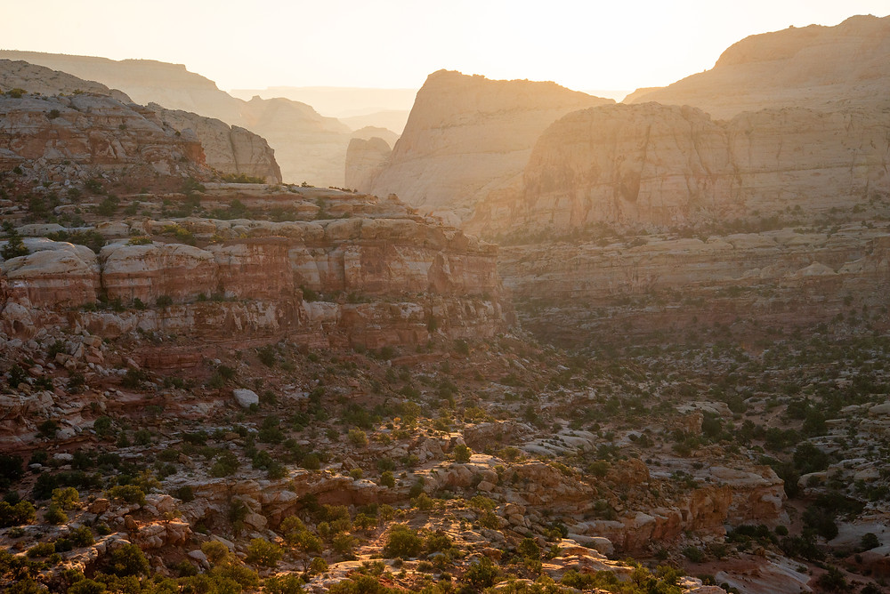 A canyon at sunrise in Capitol Reef National Park in Utah.