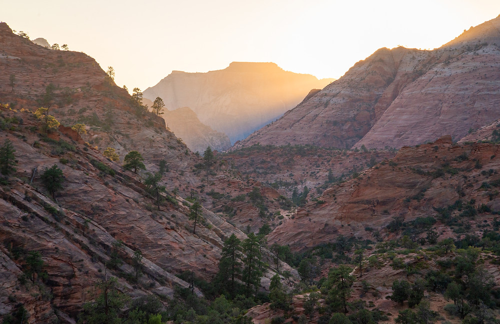 Sunset over the canyons of Zion National Park in Utah.
