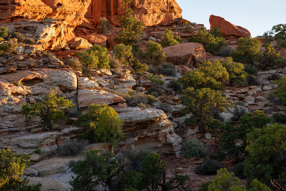 Close up of the rugged terrain in Capitol Reef National Park in Utah.