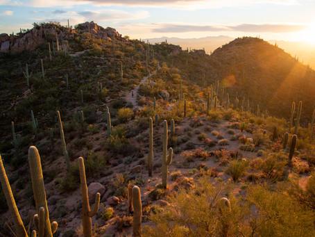 Hiking in the Desert Wonderlands of Saguaro + Chiricahua, Arizona