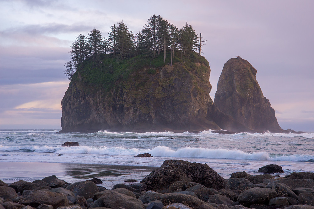 Massive sea stacks at Second Beach in Olympic National Park in Washington.