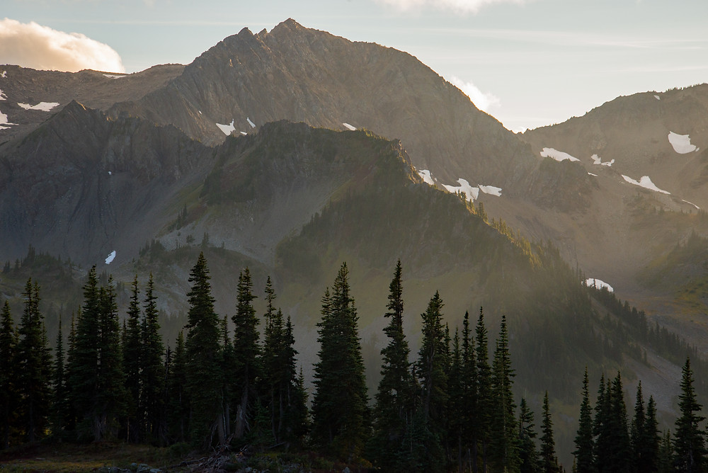 Mountain peaks in golden light in Olympic National Park in Washington.