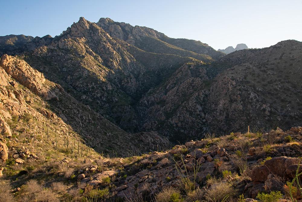 Santa Catalina Mountains Tucson Arizona.