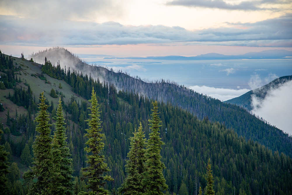 A view from Hurricane Ridge in Olympic National Park towards the San Juan Islands in Washington.