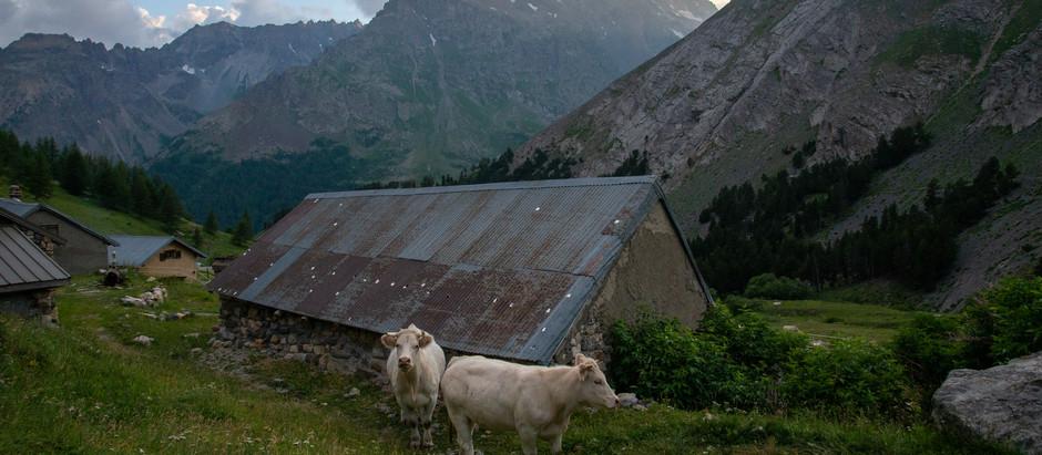 A Trip to the Alps - Part I: Massif des Cerces, France