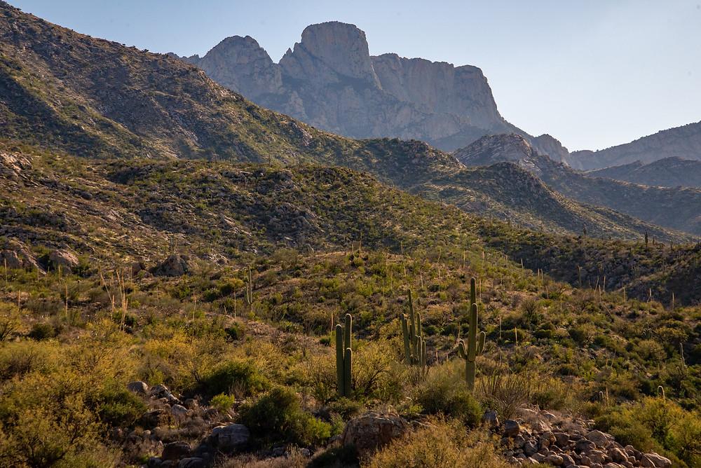 Santa Catalina Mountains in Tucson Arizona.