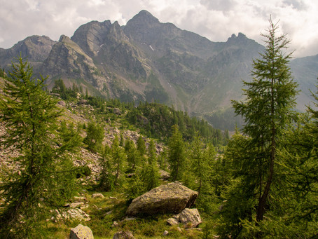A Trip to the Alps - Part II: Valtellina, Italy