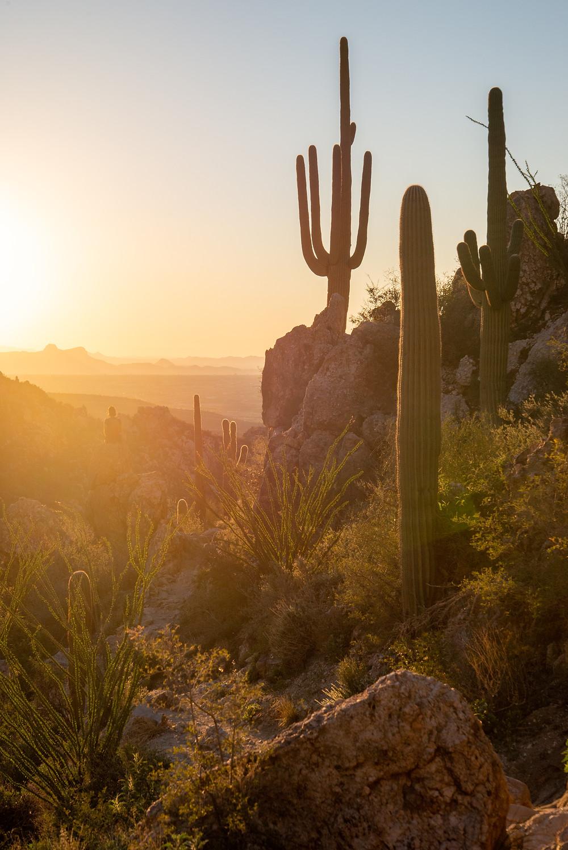 Romero Canyon Arizona at sunset.